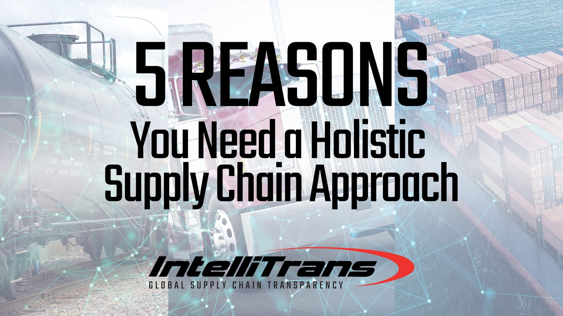 5 Reasons You Need a Holistic Supply Chain Approach